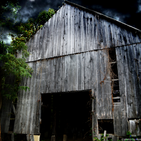 Barn by Ronald McCafferty - Buildings & Architecture Decaying & Abandoned