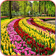 HD Beautiful Garden Wallpapers APK
