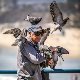 Pigeon Guy at The Pier by Mark Ritter - People Street & Candids ( pigeon, santa monica, pier, urban, candid, street, man )