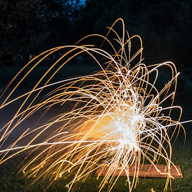 Sparks by Thomas Shaw - Public Holidays July 4th ( holiday, clayton, grass, fireworks, july 4th, july, night, backyard, sparks, nightscape, north carolina )