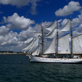 old French sailboat by Fred Goldstein - Sports & Fitness Watersports ( brest, france, ocean, sailboat, regatta,  )