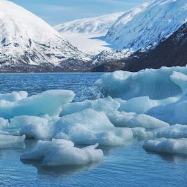 Glacier Ice by Patricia Phillips - Landscapes Waterscapes ( glaciers lakes alaska portage )
