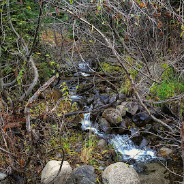 Fall mountain runoff by D.j. Nichols - Instagram & Mobile Android ( mountain runoff )