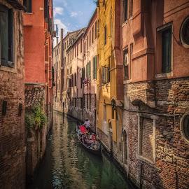 Venice by Ole Steffensen - City,  Street & Park  Neighborhoods ( venezia, gondola, colourful, italia, venice, canal, italy )
