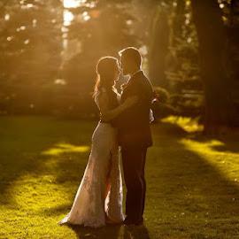 Wedding day... by Daniel Anghelache - Wedding Bride & Groom