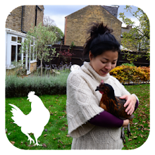 Urban Hens – Keeping Chickens in London