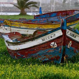 old boats by Eurico David - Transportation Boats