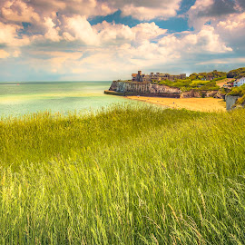 BOTANY BAY by Selaru Ovidiu - Landscapes Travel ( england, botany )