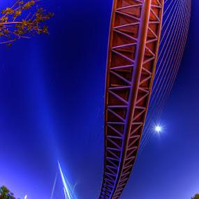 fish bridge III by Ryo SiNaga - Buildings & Architecture Bridges & Suspended Structures
