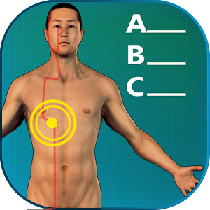 Acupuncture Quiz 3D - human For PC / Windows 7/8/10 / Mac – Free Download