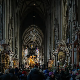 A Church in Wien by Neela Saarman - Buildings & Architecture Places of Worship ( vienna )