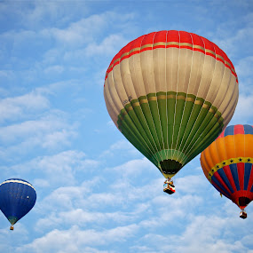 Hot air balloons by Rozi Rahman - Transportation Other ( hot air balloons )