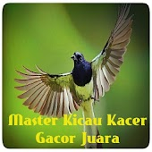 App Master Kicau Kacer Gacor Juara apk for kindle fire