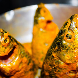 Marinated fish just before frying by Arpan Dhar - Animals Fish