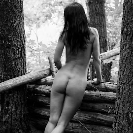 Fence Again by James Baker - Nudes & Boudoir Artistic Nude ( nude, monochrome, logs, black and white, sad, behind, forest, fence, log house, serene, kallia, bum, trees, butt, legs, brunette )