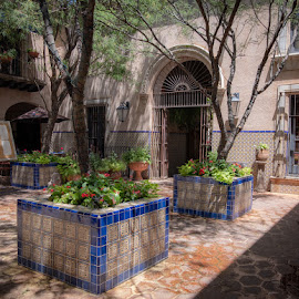 by Denise Armstrong - City,  Street & Park  Historic Districts