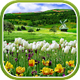 Spring Nature Live Wallpaper