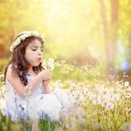 Summer kiss by Darya Morreale - Babies & Children Children Candids ( field, girl, fuzz, dandelions, sunlight )
