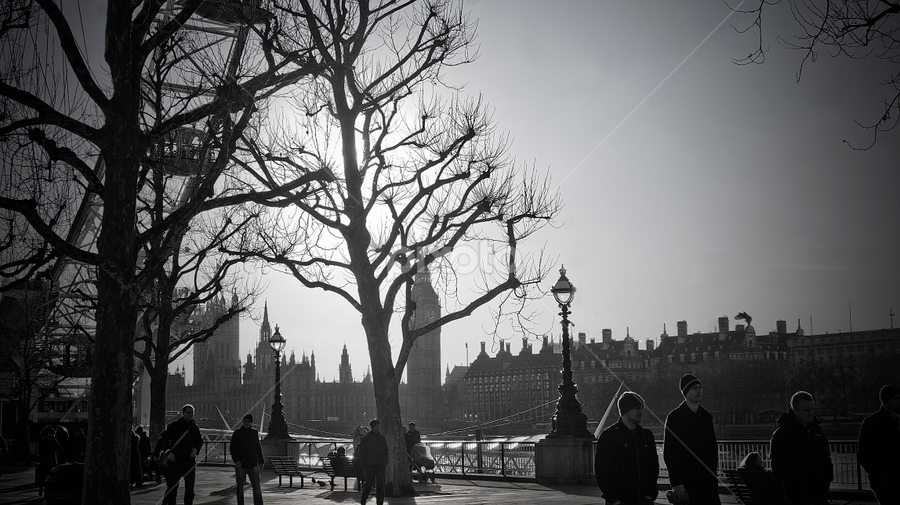 London. by Sorin Bogdan - City,  Street & Park  Skylines ( uk, westminister, london, 2011, big ben )
