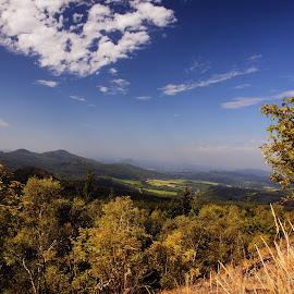 Our Czech countryside II  by Dagmar Germaničová - Landscapes Forests ( countryside, forest, landscape )