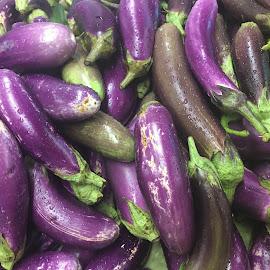 Purple Eggplants by Dawn Simpson - Food & Drink Fruits & Vegetables ( eggplants, purple, cooking, fresh, vegetables )