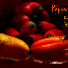 Peppers by Dave Walters - Typography Captioned Photos ( peppers, magical, food, colors, typography, spices )
