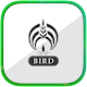 Download BIRD For PC Windows and Mac 0.1.2