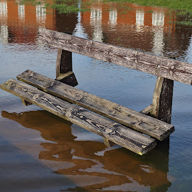 Stranded by Ron Adams - Artistic Objects Furniture ( water, wood, floods, reflections, seats )