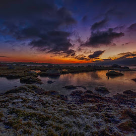 Lindö Sweden by Magnus Stridh - Landscapes Sunsets & Sunrises ( clouds, winter, morning glory, sea, cloud, seascape, sunrise )