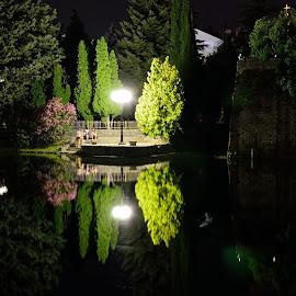 Trebisnjica by Sonja VN - City,  Street & Park  Night ( reflection, at night, trees, street lamp, people, river )