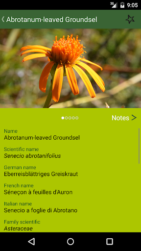 AlpineFlower Finder - Europe - screenshot
