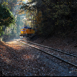 Pinecrest Rd. by Jeffrey Lorber - Transportation Railway Tracks ( lorberphoto, railroad, train, jeff lorber, union pacific, tracks, railroad tacks, jeffrey lorber )