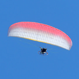 Parasailor by Becky Luschei - Sports & Fitness Other Sports ( parasailor, mountain, peak, leavenworth wa, gliding )