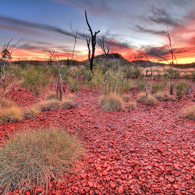 Outback Magic by Steve Hatton - Landscapes Mountains & Hills ( mountains, sunset, australia, outback, sunrise, landscape, red earth, western australia )