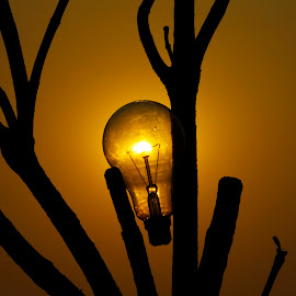 Wireless Bulb by Ajay Avate - Products & Objects Technology Objects ( tree, save energy, bulb, silhouettes, solar, solar bulb, solar energy )