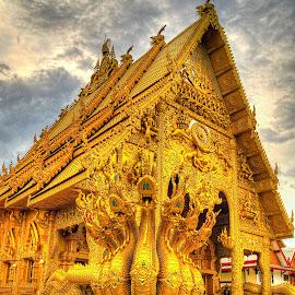 Gold Dragon by Vladimir Gergel - Buildings & Architecture Public & Historical