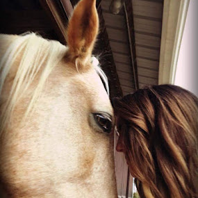 Mirror to the Soul by Christopher Estrada - Animals Horses ( connection, horses, trust, peace, beauty,  )