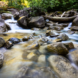 Flowing Stream through the rocks by Sujit Shanshanwal - Nature Up Close Rock & Stone ( stream, whistler, canada, flowing, waterfall, stone, rock, beauty, flow, vancouver, nature, shannon falls, fall, british columbia )