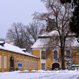 by Helena Jirasová - Buildings & Architecture Public & Historical ( castle in winter )
