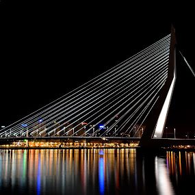 Erasmus Bridge by Paulus Soegriemsingh - Buildings & Architecture Bridges & Suspended Structures ( lights, erasmus bridge, rotterdam, night, bridge,  )