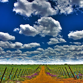 Highway to heaven by Rui Gonçalves - Landscapes Cloud Formations ( clouds, caminho, heaven, landscape, nuvens )