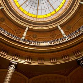 Museo de Ciencias Naturales  by Edith Polverini - Buildings & Architecture Architectural Detail ( argentina, ceilinc, la plata, dome, curves )