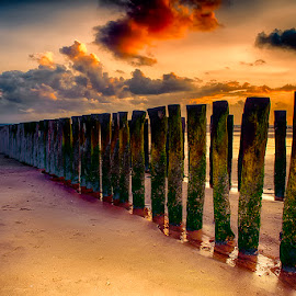 wavebreakers by Egon Zitter - Buildings & Architecture Other Exteriors ( water, wavebreaker, pole, sunset, dutch, ocean, beach )