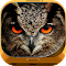 Night Owl Wallpaper HD 1.0.4 Apk