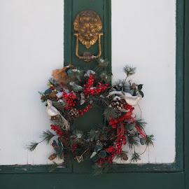Wreath by David Gilchrist - Artistic Objects Other Objects ( christmas wreath, colourful, winter, decoration, wreath, door wreath )
