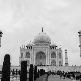 FULL VIEW! by Rahul Panda - Buildings & Architecture Architectural Detail ( monochrome, taj mahal, cloudscape, agra, india, bnw )
