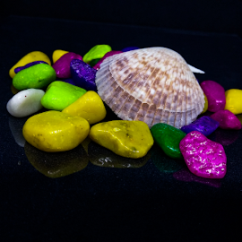 Colours of life by Vivek Sharma - Instagram & Mobile Android ( vivekclix, mobilography, colourful, vivek, marbles, seashell, black, colours )