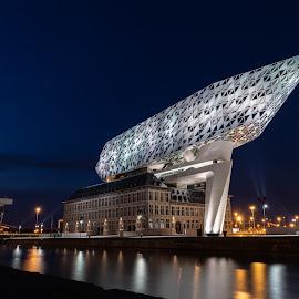 Boothuis Antwerpen by Nick Vanderperre - City,  Street & Park  Night ( haven antwerpen, 2018, nachtfotografie, boothuis,  )