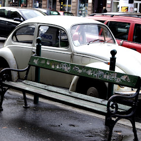 Beetle in Budapest by Emma Robertson - Transportation Automobiles