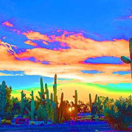 Happy Trails Sunset by Will McNamee - Digital Art Places ( dld3us@aol.com, gigart@aol.com, aundiram@msn.com, danielmcnamee@comcast.net, mcnamee2169@yahoo.com, ronmead179@comcast.net )